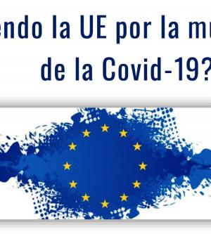 CONVERSACIONES CON FRANCISCO FONSECA, DIRECTOR DE LA REPRESENTACÓN DE LA COMISIÓN EUROPEA EN ESPAÑA