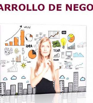 CURSO ONLINE MUJER Y LIDERAZGO: TALLER GESTIÓN DE DESARROLLO DE NEGOCIO
